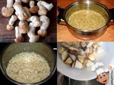 как сварить суп из белых грибов с перловкой рецепт