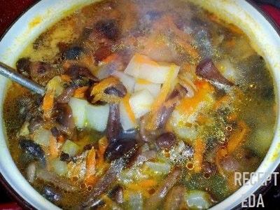 грибной суп с рисом из сушеных грибов