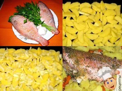 запечь окуня с картошкой в духовке, рецепты с морским окунем в духовке